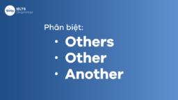 Cách phân biệt Others, Other, Another dễ nhất bạn phải biết