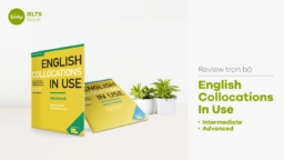 Review English Collocations In Use