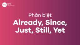 Hướng dẫn phân biệt Already, Since, Just, Still và Yet trong tiếng Anh đầy đủ nhất