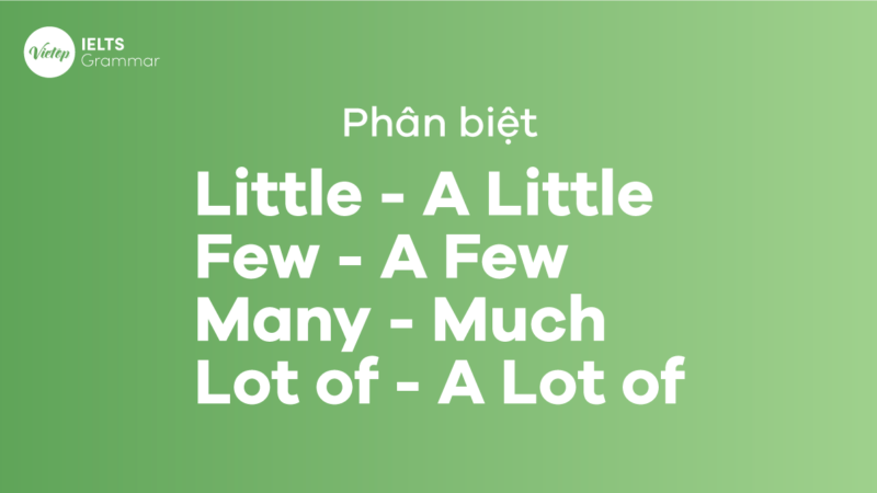 Phân biệt Little – A Little, Few – A Few, Many – Much, Lot of và A Lot of