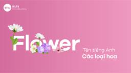 Tên các loại hoa bằng tiếng Anh