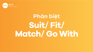 Phân biệt Suit - Fit - Match - Go With